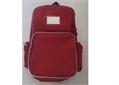 SCHOOL BAG, backpack, for school kit